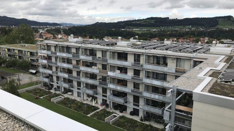 PV Anlage auf Gründach in St. Gallen